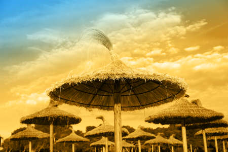 parasols: Straw parasols and beds on the sandy beach Stock Photo
