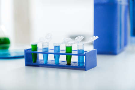 polymerase: Micro tubes with biological samples in laboratory for DNA analysis Stock Photo