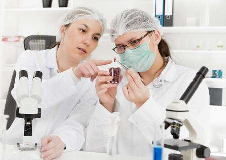 식품 품질의 실험실에서 실험실 보조. 스톡 콘텐츠