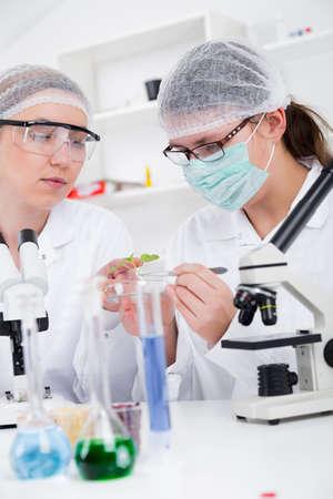 化学試験に取り組んでいる研究室の科学者のチーム。 写真素材 - 39881393