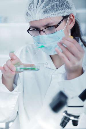 coronavirus: scientist working at the laboratory. Stock Photo