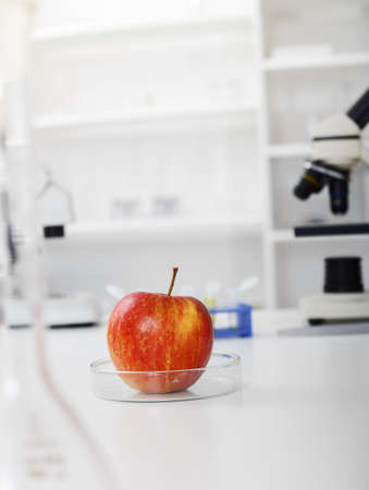 modificar: Chemical Laboratory of the Food supply.Food in laboratory, dna modify