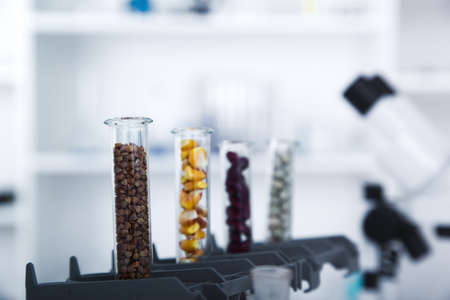 food supply: Chemical Laboratory of the Food supply . Food in laboratory, dna modify .Toning image