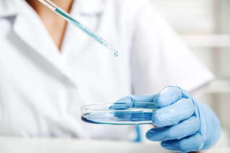 Pipet met druppel kleur vloeistof en petrischaaltjes .Scientist onderzoeken oplossing in petrischaal in een laboratorium