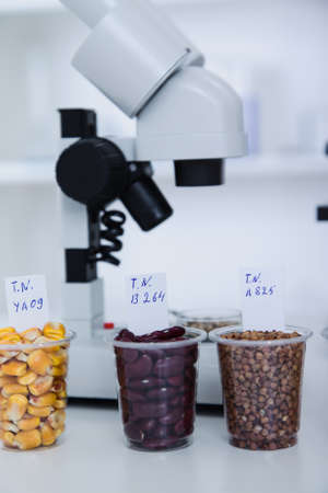 food supply: Chemical Laboratory of the Food supply . Food in laboratory, dna modify . Toning image. Stock Photo