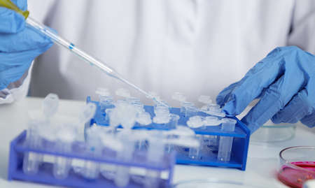 Laboratory assistant in the of food quality.Cell culture assay to test genetically modified seed.