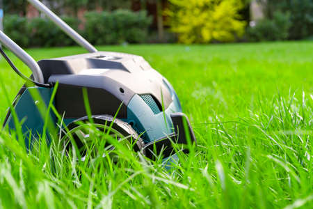 緑の草の上のスカリフィエ。庭で働く。スカリフィエ 写真素材 - 99904029