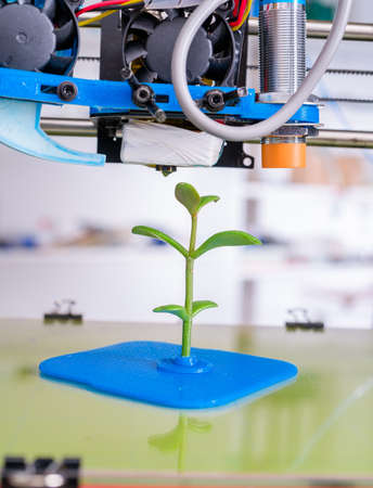 Young Plant Growing.3d printer of the device during the processe
