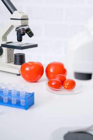 Genetic breeding of vegetables in lLaboratory , analyzing food quality