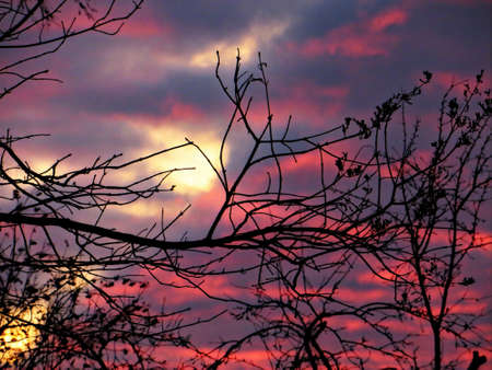 sunset sky: Beautiful nature background with a red sunset sky.