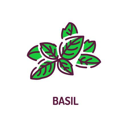 Basil color line icon. Healthy, organic food. Herb leaves. Cooking ingredient. Pictogram for web page, mobile app, promo. UI UX GUI design element. Foto de archivo - 134583101