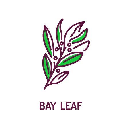Bay leaf color line icon. Spices product. Cooking ingredient. Pictogram for web page, mobile app, promo. UI UX GUI design element. Foto de archivo - 134593759