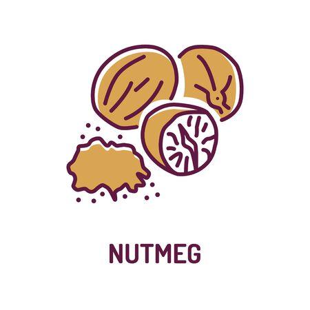 Ganze und gemahlene duftende Muskatnuss mit Symbol für die Beschriftungsfarbe. Gewürze, würzen. Kochzutat.