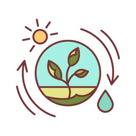 Competent photosynthesis color line icon. The process by which green plants and certain other organisms transform light energy into chemical energy. Pictogram for web page, mobile app, promo. UI UX GUI design element. Editable stroke. 向量圖像