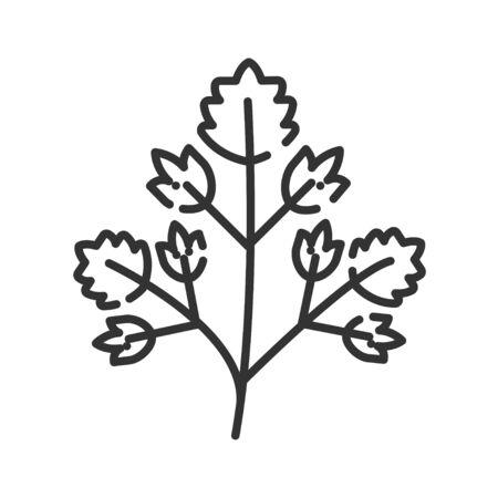 Parsley black line icon. Herb leaves. Salad. Natural vegetable. Healthy, organic food Cooking ingredient Vettoriali