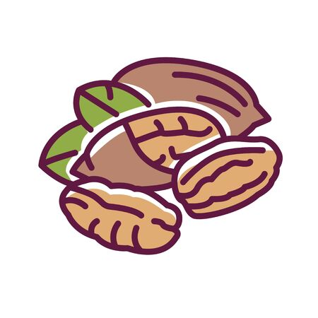 Pecan nut color line icon. Nuts in the shell and with leaves. Pictogram for web page, mobile app, promo. UI UX GUI design element. Editable stroke