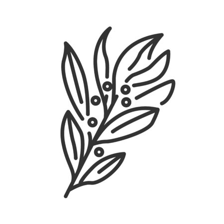 Bay leaf black line icon. Spices product. Cooking ingredient. Pictogram for web page, mobile app, promo