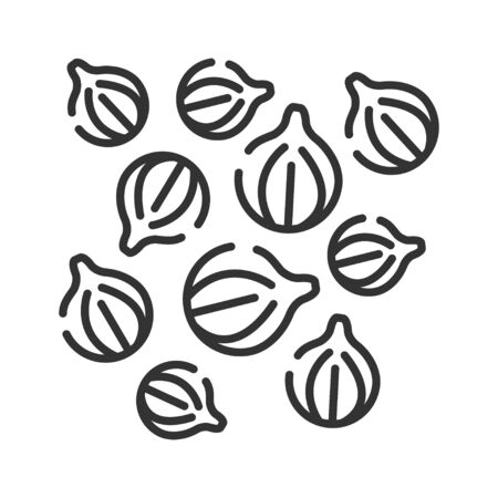 Coriander black line icon. Herbs and spices. Cooking ingredient. Pictograph for web page. Çizim