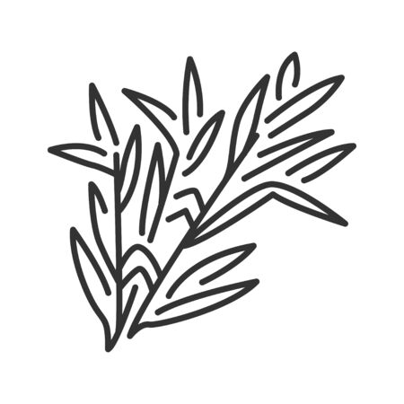 Tarragon branch black line icon. Herbs and spices. Cooking ingredient. Çizim
