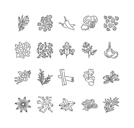 Spices and herbs black line icons set. Seasonings: ground pepper, fennel, cinnamon, cloves, ginger, Cooking ingredient.