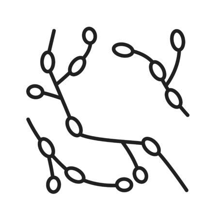 Bacteria rhodomicrobium black line icon. Microscopic germ cause diseases concept. Pictogram for web, mobile app, promo. UI UX design element. Editable stroke