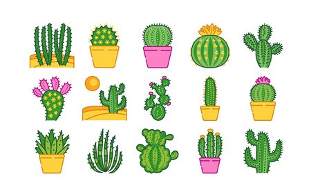 Cacti color line icons set. Different types of cacti. Pictogram for web page, mobile app, promo. UI UX GUI design element. Editable stroke.
