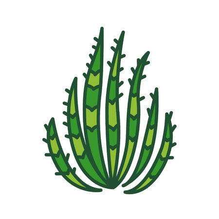 Cactus color line icon. Kind of a plant adapted to hot, dry climates. Pictogram for web page, mobile app, promo. UI UX GUI design element.