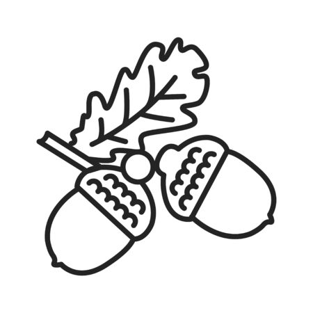 Acorn black line icon. Oak branch with leaves. Pictogram for web page, mobile app, promo. UI UX GUI design element. Editable stroke Reklamní fotografie - 140642422