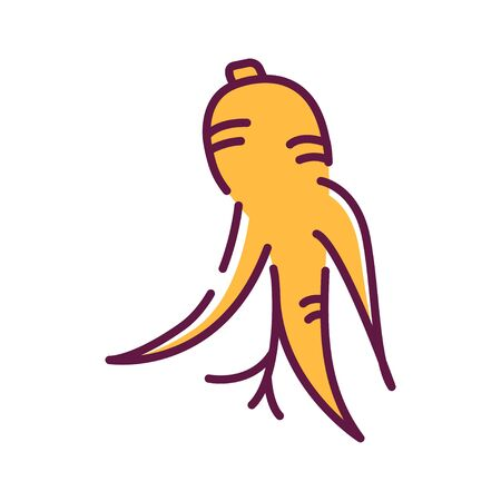 Korean dry ginseng root line color icon. Alternative medicine from asia. Sign for web page, mobile app, button