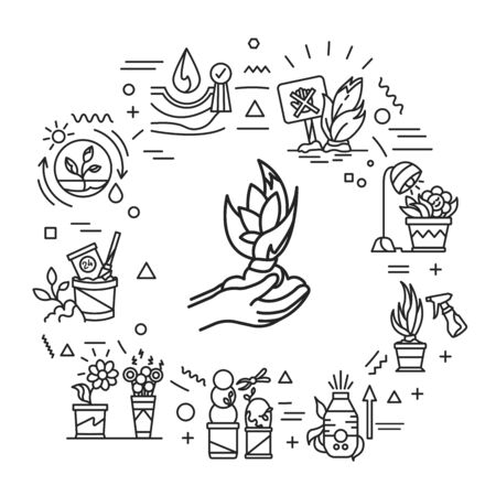 Plant care web banner. Complex of care procedures for plant rotation. Infographics with linear icons on white background. Creative idea concept. Isolated outline black illustration.