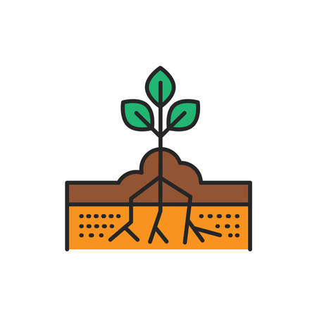 Growing plant color line icon. Pictogram for web page, mobile app, promo. Editable stroke.