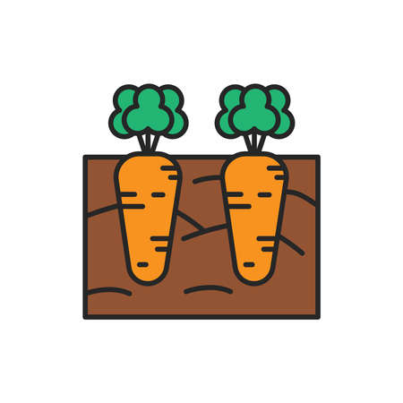 Growing carrots color line icon. Pictogram for web page, mobile app, promo. Editable stroke.