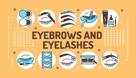 Eyebrows and eyelashes service word lettering typography. Infographics with linear icons on beige background. Creative idea concept. Isolated outline color illustration.