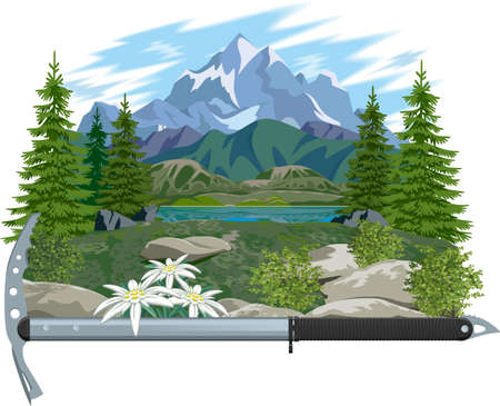 Mountain landscape with edelweiss and an ice ax