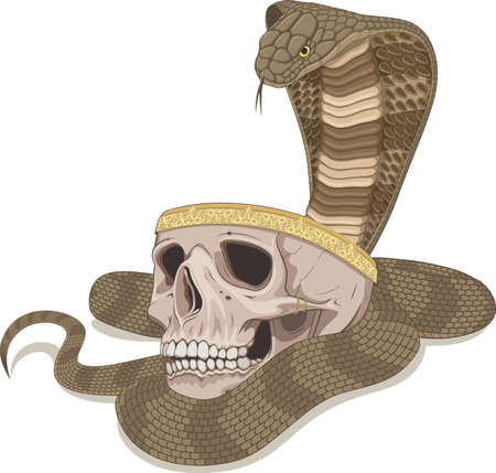 The snake bowed over the cup in the form of a skull