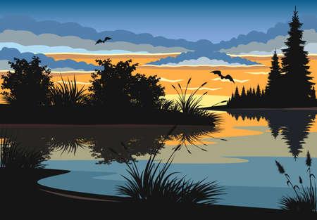 Landscape. Sunset on the lake. Illustration