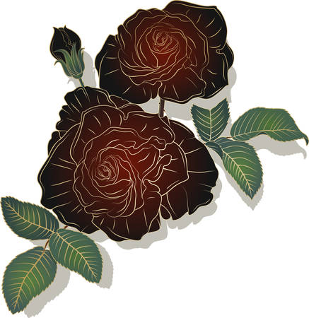 Vector image of plants and flowers. The branch of roses on a white background.