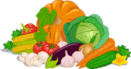Vector composition of vegetables on the topic of food, healthy eating. Ilustrace