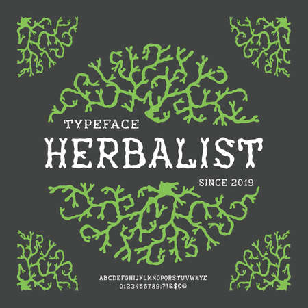 Font Herbalist. Hand crafted retro vintage typeface design. Handmade lettering. Authentic handwritten graphic latin alphabet. Vector illustration old badge label logo tee template. 向量圖像