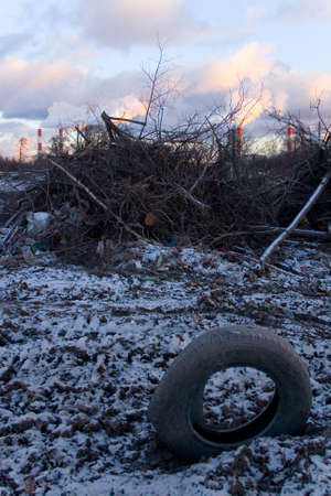felled: The felled trees and a wheel tire on a background of smoking chimneys of thermal power station. Ecological problems.