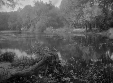 Duck pond in the Terletsky forest park. Russia. Attention! The image contains granularity. Real retro technology. Stock Photo