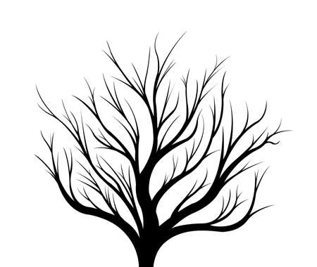 Black silhouette of a tree on a white background. Illustration. Stock Photo