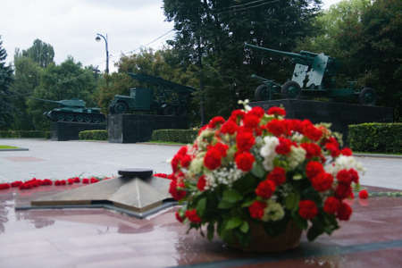Moscow, Russia, July 28, 2013: Flowers on the background of Soviet armament in Izmaylovsky Park.