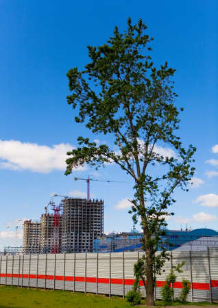 A tree on the background of the construction of a new residential complex at Avtozavodskaya. The territory of the former ZIL plant, next to the station M