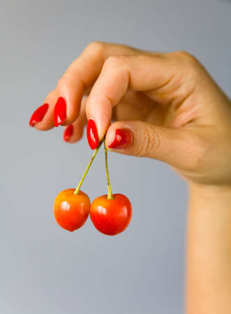 The fingers of the female hand hold the cherries against the gray gradient background. Fruit. Stock Photo