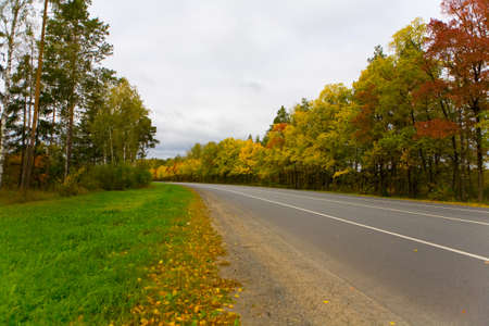 The road without cars in the fall. The middle strip of Russia.