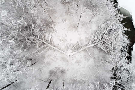A broken tree is covered with snow. Banco de Imagens