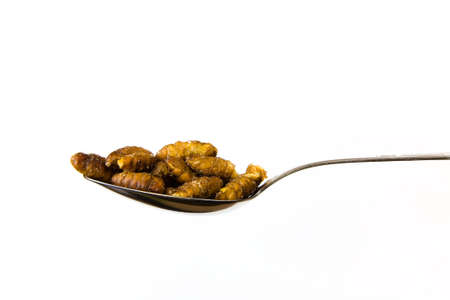 Silkworm fried with soy sauce on a spoon. Close-up. Stockfoto - 98612433
