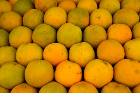 A lot of yellow oranges intended for fresh. Food and drink. Reklamní fotografie