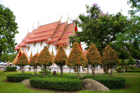 Beautiful trees grow against the backdrop of a Buddhist temple. Thailand. 写真素材